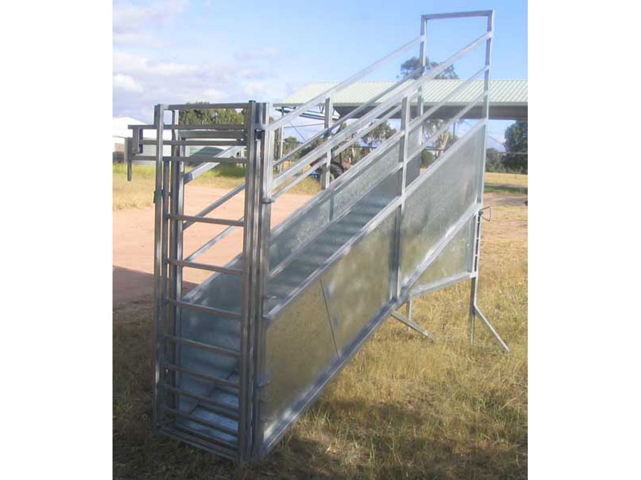 adjustable sheep and goat loading ramp