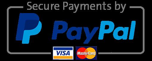 Paypal logo small